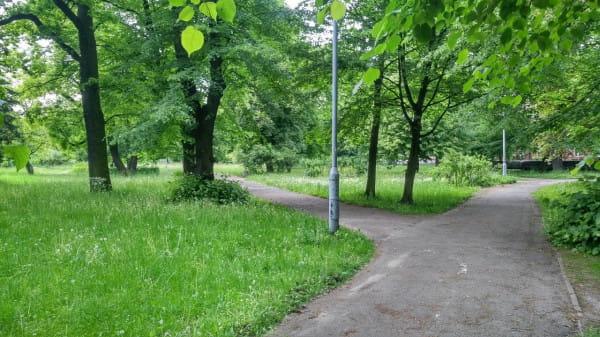 Na terenach parkowych pomiędzy Centrum Sportu Akademickiego PG a Bramą Oliwską znajdowały się niegdyś cmentarze. Większość z nich została zlikwidowana na przełomie lat 60. i 70.
