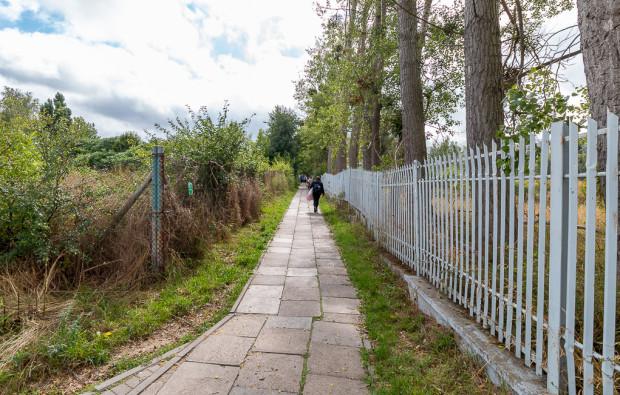 Projekt planu podtrzymuje istnienie bardzo ważnego lokalnie chodnika łączącego ul. Rakoczego z Lema (dojście do przystanków tramwajowych i centrum handlowego). Po prawej teren należący do Euro Stylu.