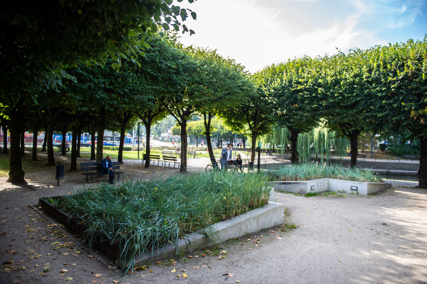 Urzędnicy podsumowali we wtorek akcję niekoszenia traw w parku przy przy zbiorniku retencyjnym Mokra Fosa i stwierdzili, że są zadowoleni z jej efektów.