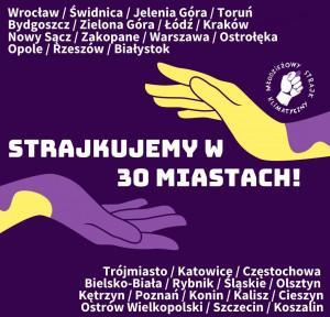 W piątek Młodzieżowy Strajk Klimatyczny objął 30 miast w Polsce.