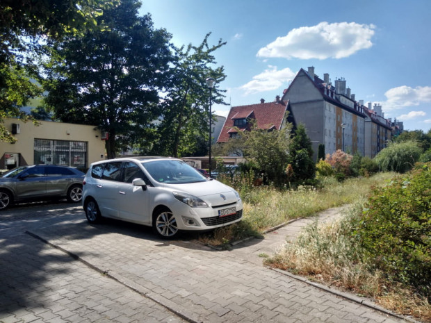 Radni dzielnicy Brzeźno mają dość parkowania przez kierowców na chodnikach i pasach zieleni i chcą zapytać mieszkańców, czy w dzielnicy nie uruchomić poboru opłat w ramach strefy płatnego parkowania.
