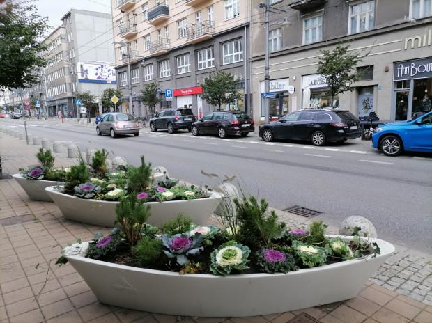 Nowe kwiaty już można podziwiać w kwietnikach nie tylko w centrum Gdyni.
