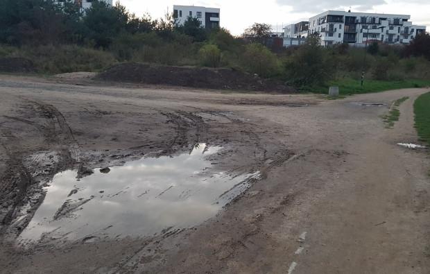 Tak wygląda druga połowa ścieżki wokół zbiornika Świętokrzyska I.