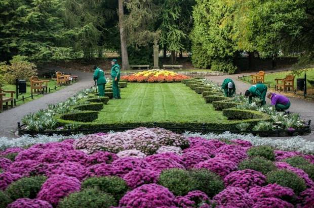 Jesienna wymiana roślinności w Gdańsku rozpoczęła się od parku Oliwskiego i potrwa do końca tego tygodnia.