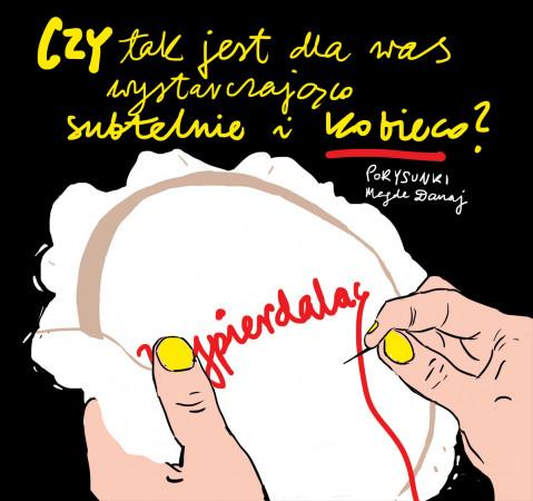 - Jeśli politycy i stare dziady chcą, żebyśmy były delikatne i wrażliwe jak kobiety w ich ulubionych serialach polskiej telewizji, to proszę, oto mój komentarz... - mówi Magda Danaj o nowym rysunku.