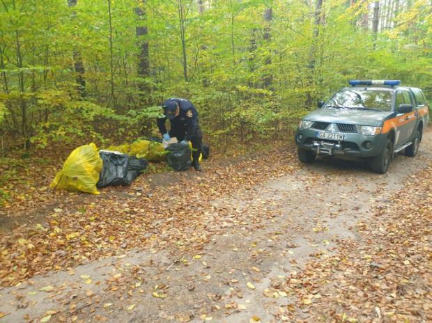 Wyrzucający śmieci do lasu musiał nie tylko je uprzątnąć, ale też zapłacić 500 zł mandatu.