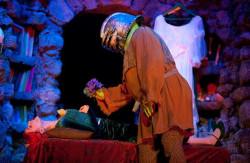 """""""No pięknie, trafiła mi się katatoniczka"""" mówi Shrek widząc Fionę. Wymyślony przez królewnę scenariusz """"pierwszego spotkania"""" niespecjalnie mu pasuje."""
