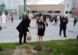 Prof. Jerzy Buzek i prezes PARP Bożena Lublińska-Kasprzak sadzą lipę.