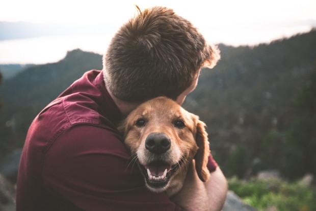Jak mówią eksperci, również spędzanie czasu ze zwierzętami może znacząco poprawić nasz nastrój, a nawet zdrowie psychiczne.