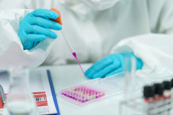 Wirusologia molekularna jest dziedziną rozwijaną w Gdańsku od ponad 25 lat.