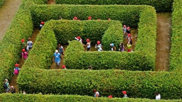 Podobnego typu labirynt mógłby pojawić się w Letnicy.