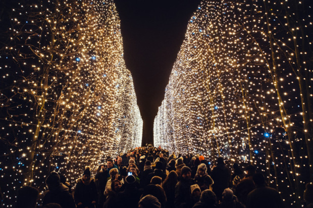 W tym roku m.in. kurtyna świetlna, która co roku rozświetlała park Oliwski, zostanie przeniesiona do parku Reagana.