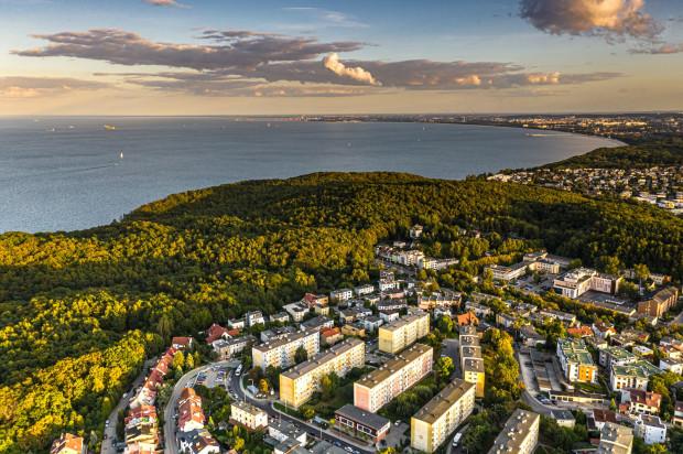 Gdynia to jedno z nielicznych miast w Polsce, w którym z każdej dzielnicy można dojść spacerem do lasu.