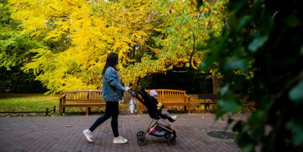 Z badań wynika, że najwięcej dzieci rodzi się w rodzinach, w których oboje rodzice pracują. Decyzja o macierzyństwie podejmowana jest najczęściej w oparciu o zabezpieczenie finansowe.