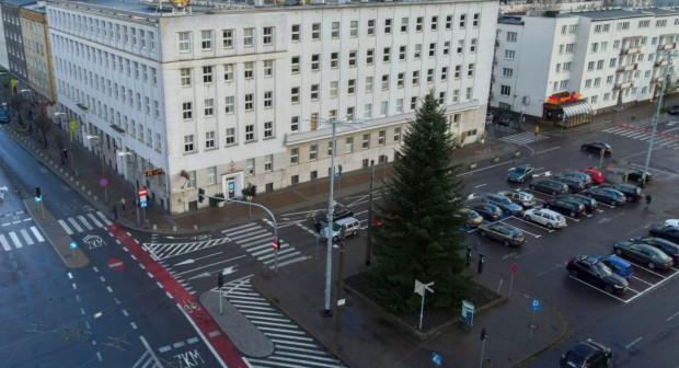 Drzewko stoi także przed UM w Gdyni.