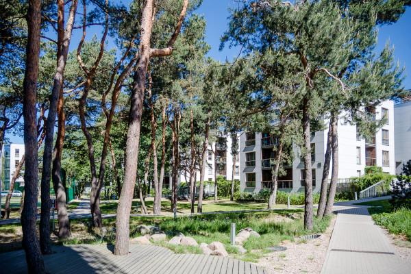 Wysokość budynków osiedla Nadmorski Dwór, które powstało nieopodal deptaka prowadzącego do molo w Brzeźnie, nie przekracza otaczających go drzew.