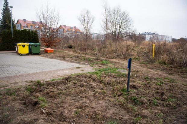 Na osiedlowych trawnikach często pojawiają się ślady obecności dzików.