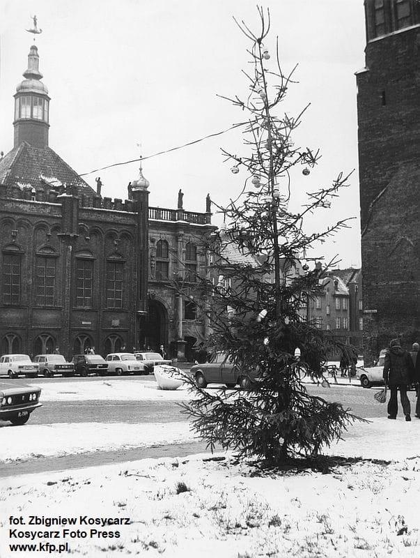 Zanim na Długim Targu w Gdańsku pojawila się ogromna choinka, w latach 70. Targ Węglowy ozdabiał taki niezbyt okazały świerk przyozdobiony żarówkami. Grudzień 1975 r.