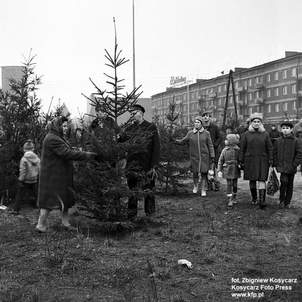 Sprzedaż choinek na ul. Rajskiej w Gdańsku. Grudzień 1970 r.