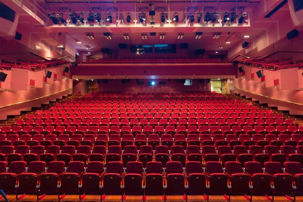 Sale teatralne, kinowe, koncertowe, operowe i muzealne przez wiele miesięcy mijającego roku świeciły pustkami.