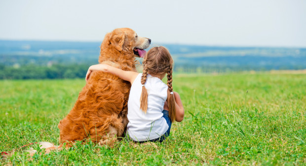 Nie ulega wątpliwości, że więź pomiędzy młodym człowiekiem a zwierzęciem może być wyjątkowa. Wyobrażenie o tym międzygatunkowym porozumieniu nie powinno być jednak argumentem, który zadecyduje o wzięciu zwierzaka pod swój dach.