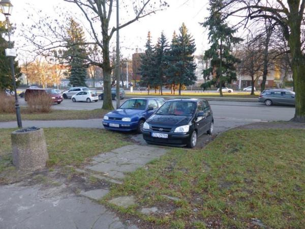 Kierowcy dość często zostawiali swoje pojazdy przy wejściu do parku.