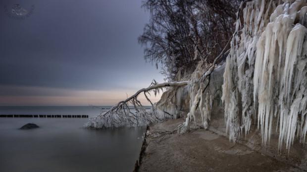 Morze ociepla powietrze, które znajduje się w nadmorskich dzielnicach. Z tego powodu, temperatura zimą w dzielnicach tzw. Dolnego Tarasu może być wyższa o 1-2 stopnie Celsjusza niż w dzielnicach Górnego Tarasu.