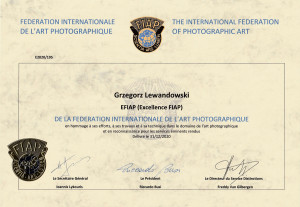Prace fotografa prezentowane w procesie nadawania tytułu stają się częścią artystycznego dziedzictwa FIAP.
