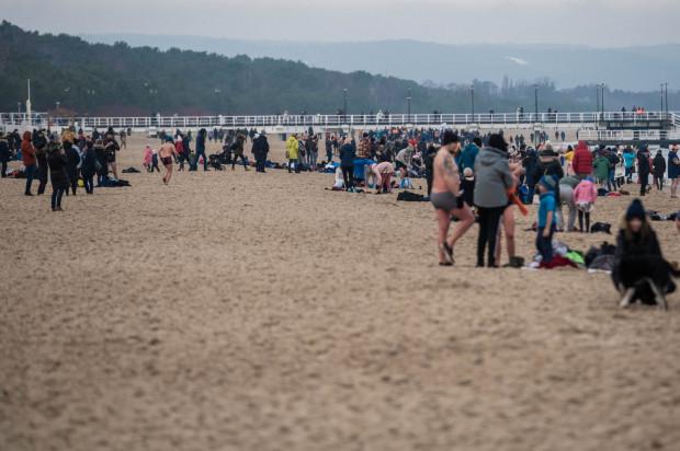 Spacerowicze i morsy na plaży w Brzeźnie w niedzielę, 10 stycznia.