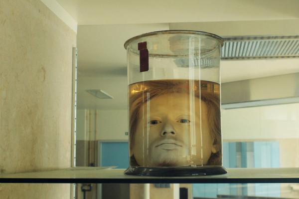 Wypreparowana głowa seryjnego zabójcy Diogo Alvesa, który w latach 1836-1840 zabił w Portugalii siedemdziesiąt osób. Makabryczny eksponat znajduje się na wystawie w Muzeum Narodowym Sztuki Antycznej w Lizbonie. Ktoś naiwnie uwierzył, że taka praktyka była również możliwa w Polsce końca lat 80. XX wieku.
