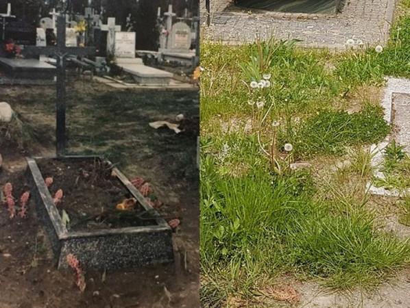 Porównanie miejsca pochówku Tuchlina na Cmentarzu Łostowickim w Gdańsku. Po lewej zdjęcie z drugiej połowy lat 90. Tabliczka z personaliami zbrodniarza została już zdjęta z krzyża przez administrację cmentarza. Nastąpiło to na skutek skarg rodzin, których bliscy zostali pochowani w tej samej kwaterze. Grób Tuchlina był bowiem regularnie bezczeszczony, np. poprzez oddanie na niego moczu. Zdjęcie po prawej przedstawia to samo miejsce współcześnie.