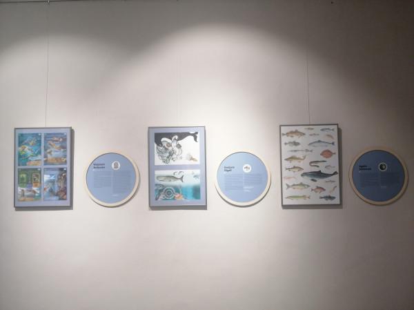 """Wystawa w Galerii NCK """"Czy będzie z nami Bałtyk"""" czynna jest codziennie do 18 lutego."""