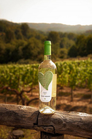 Villa Eva przygotowała dwie propozycje menu oparte na afrodyzjakach. Do dań zamówić można też specjalne, walentynkowe wina.