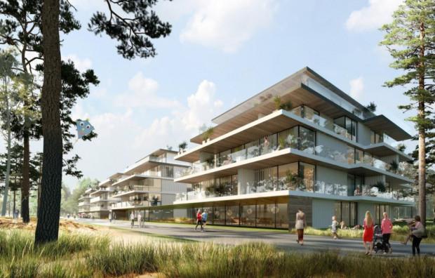 Wstępna koncepcja zabudowy terenu należącego do PB Górski - RWS.