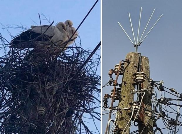 Para bocianów od lat wijąca gniazdo na tym samym słupie energetycznym przy ul. Otomińskiej prawdopodobnie będzie musiała poszukać sobie nowego miejsca do bytowania.