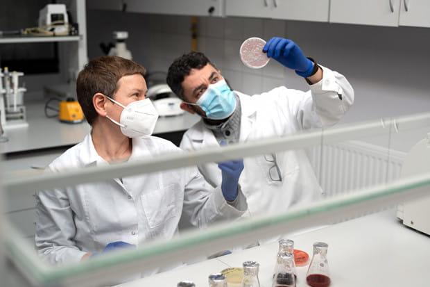 System produkcji białek oparty na wyselekcjonowanych drożdżach stworzyli naukowcy z Politechniki Gdańskiej we współpracy z Politechniką Łódzką.