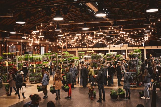 Festiwal Roślin to doskonała okazja, aby nadać swojemu mieszkaniu tropikalnego klimatu, kupując rośliny doniczkowe w okazyjnych cenach. Impreza odbędzie się 6-7 marca w Plenum.