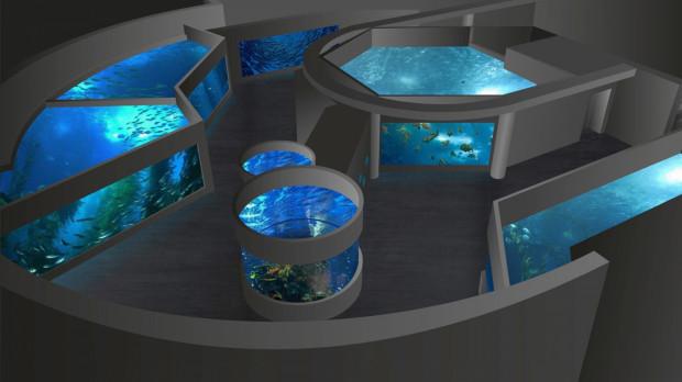 Mieszkanców 13 nowych, bardzo dużych akwariów, będzie można podziwiać po zakończeniu przebudowy Akwarium Gdyńskiego w 2023 r.