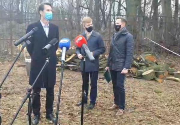 Przedstawiciele gdańskiego PiS zorganizowali w poniedziałek konferencję w miejscu wycinki. Apelowali do prezydent o wyjaśnienia.
