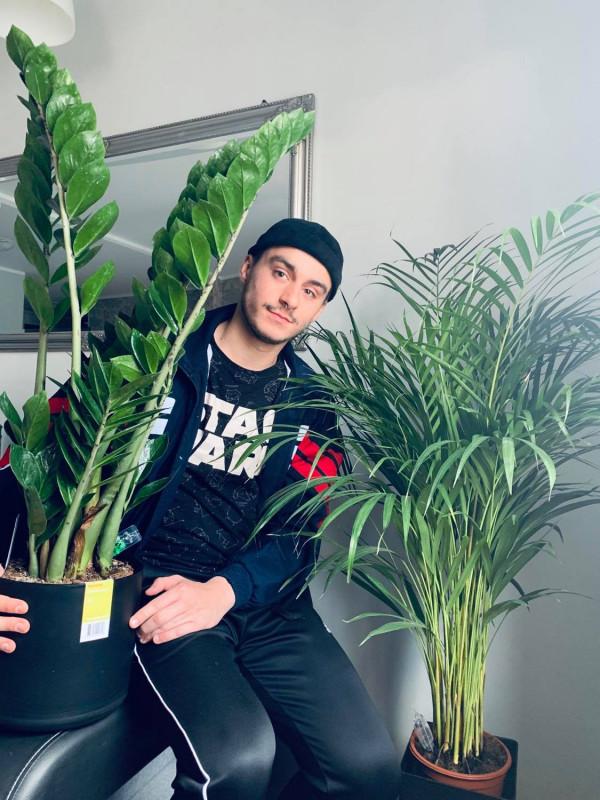 Uprawa rośliny to nowa pasja wielu osób.