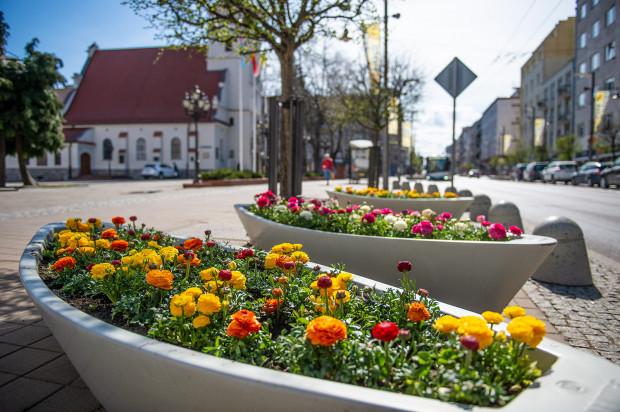 W niedzielę, 21 marca, przyszła kalendarzowa wiosna. Na wyższe temperatury trzeba jednak jeszcze trochę poczekać. Zdjęcie z kwietnia 2020 roku.