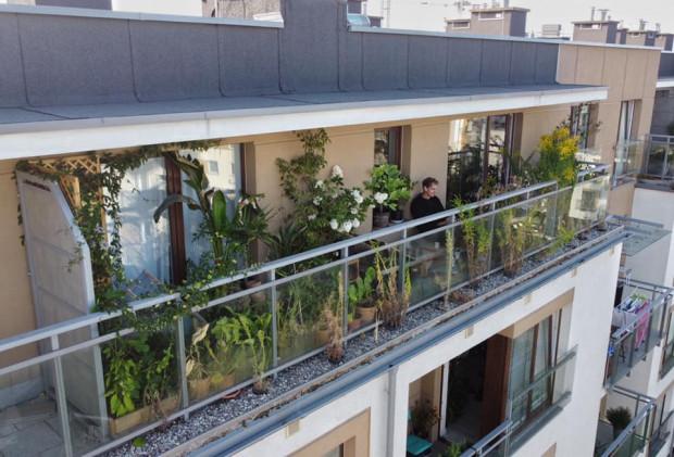 Balkon pełen zieleni. Nz. Remigiusz Dorawa.