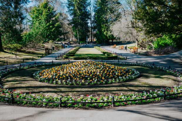 Wiosna to idealny czas na sadzenie kwiatów.