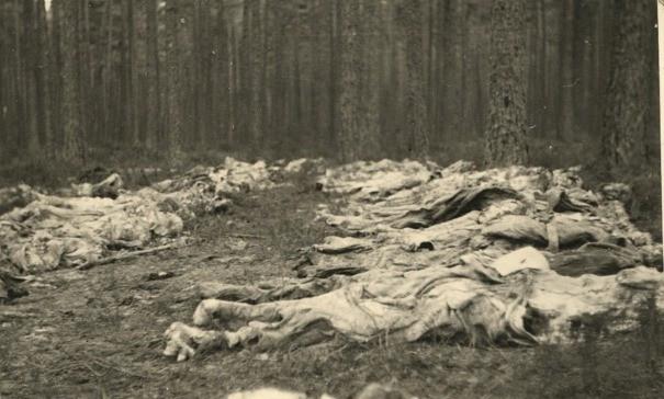 Ekshumowane ciała w Piaśnicy, 1946 r. Ze zbiorów Muzeum Miasta Gdyni.