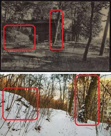 Usytuowanie skarpy oraz jednego z drzew pozwoliło dokładnie ustalić miejsce, w którym stała kawiarnia.