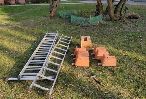 Z inicjatywy mieszkańców zawieszono budki lęgowe i karmniki dla ptaków.