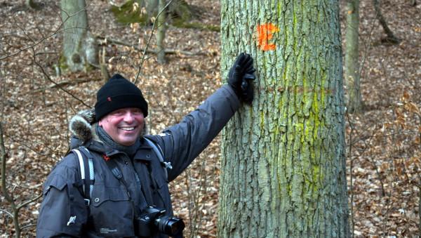 """W miejsce kropki oznaczającej drzewo do wycięcia pojawiła się litera """"E"""", oznaczająca obiekt ekologiczny, do zachowania. Na zdjęciu Brunon Wołosz z fundacji Fedelis Siluas."""