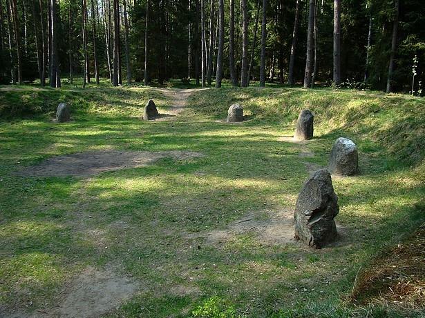 Rezerwat obejmuje kompleks leśny o powierzchni 16,91 ha, na terenie którego znajduje się cmentarzysko plemienia Gotów.