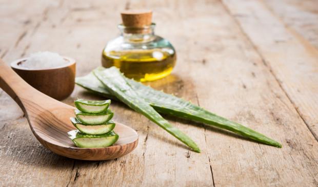 Zagęszczony sok z liści aloesu może być m.in. wykorzystywany przy schorzeniach oraz zaburzeniach pracy przewodu pokarmowego. Wspiera także układ immunologiczny.