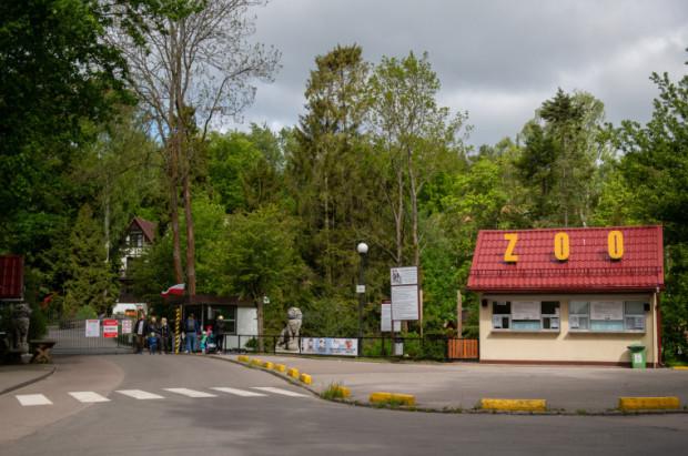 1 maja gdańskie zoo wydłuża godziny otwarcia.